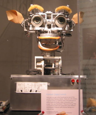 POLIMEREK - a robot
